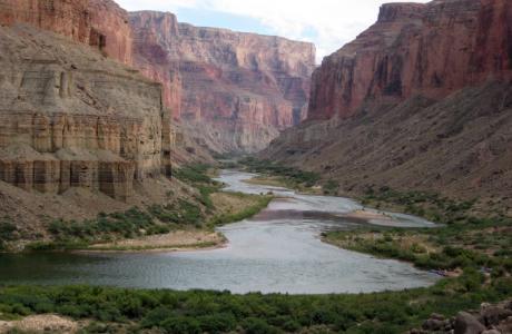 Colorado River (Courtesy of Emma Williams)