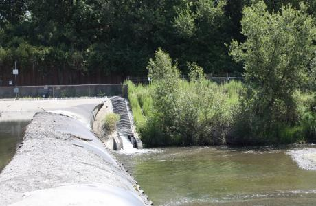 Image of Images from the Russian River tour