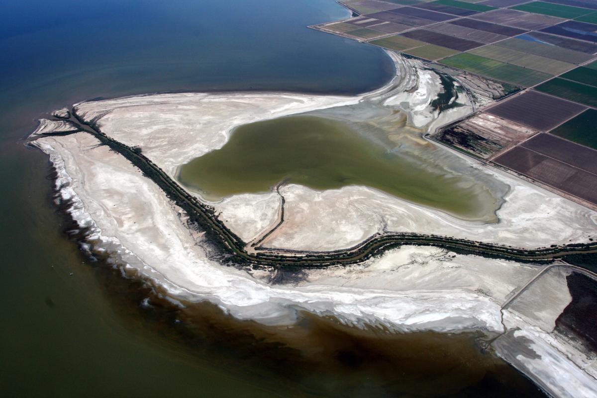 Salton Sea Water Education Foundation