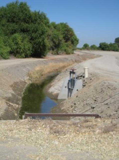 Image of Salinity in the Central Valley: A Critical Problem