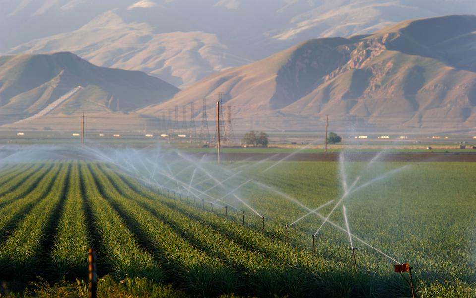 Water sprinklers irrigate a field in the southern region of the San Joaquin Valley in Kern County.