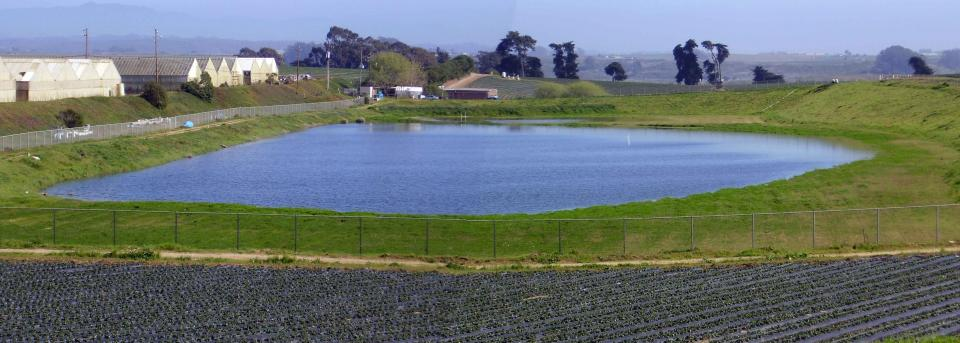 Groundwater infiltration in the Pajaro Valley