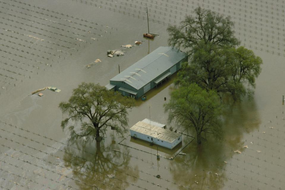 Flooded farm property