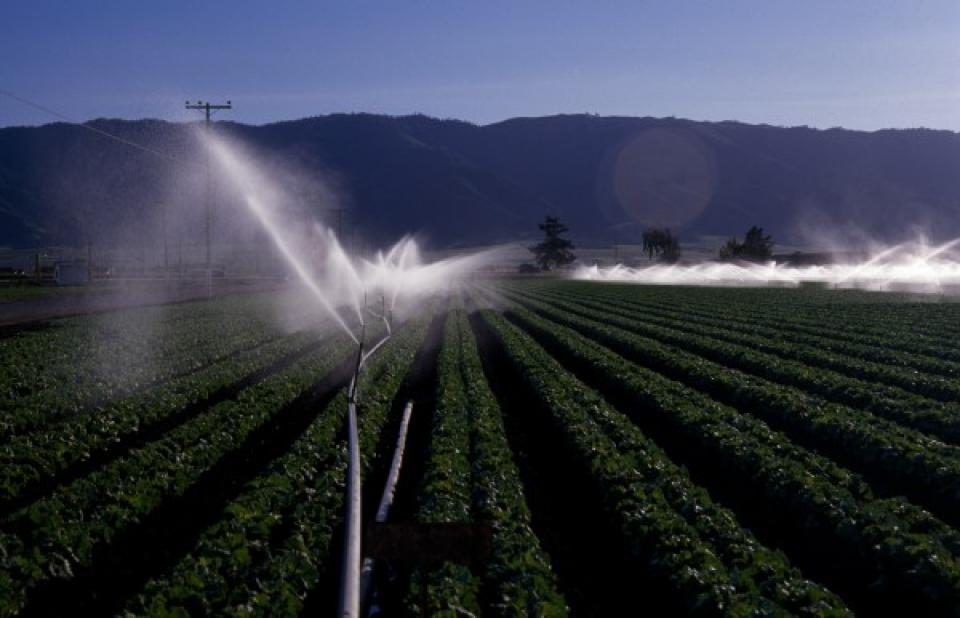 Agricultural Drainage - Water Education Foundation