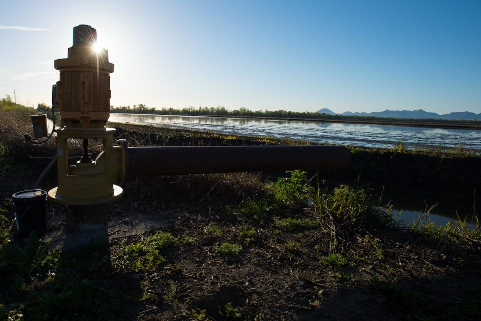 A groundwater monitoring well in Colusa County, north of Sacramento.