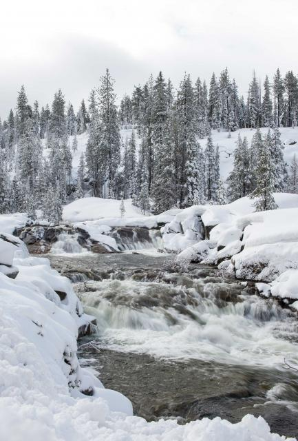 Yuba River in winter