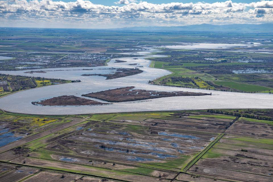 The Sacramento-San Joaquin Delta, California's vital water hub and a source of ongoing conflict over water use and the environment.