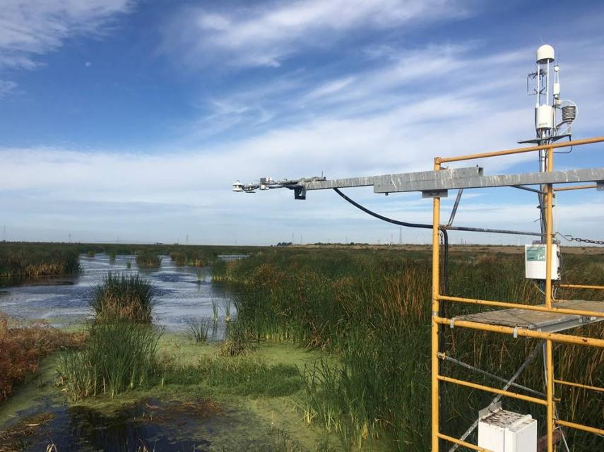 Equipment on this tower measures fluctuations in greenhouse gas emissions for managed wetlands on Sherman Island in the Sacramento-San Joaquin Delta.