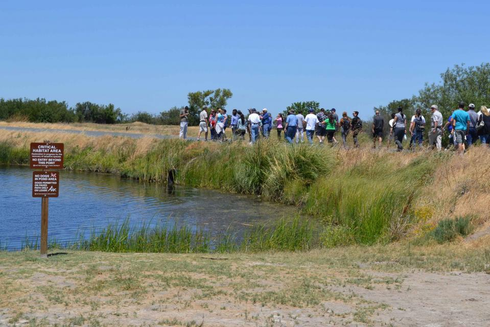 Visitors can catch a glimpse of the old Delta at Big Break Regional Shoreline in Oakley.