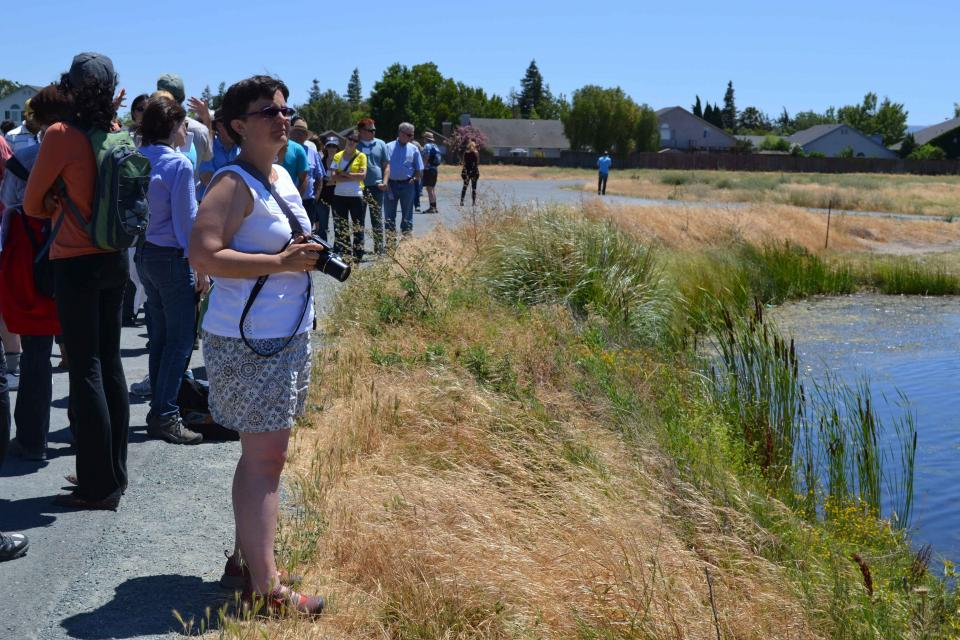 Visitors explore habitat at Big Break Regional Shoreline in Oakley.