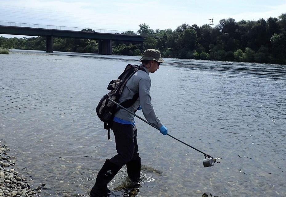 Water from the American River in Sacramento is sampled as part of a study to identify whether fecal pollution in the river is from human, pet, wildlife or livestock sources.
