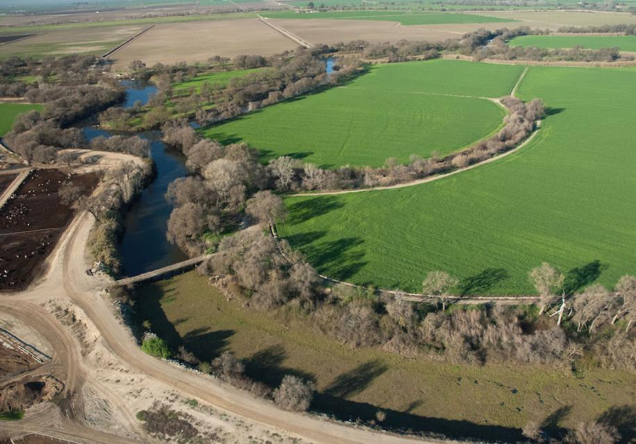 Accelerating climate change impacts in the Sacramento-San Joaquin Delta, including the spread of invasive plants like the water hyacinth pictured in this Delta channel, are fueling worries about the ability of scientists to keep up.
