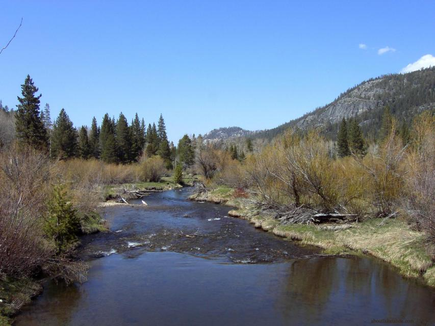 Upper Truckee River