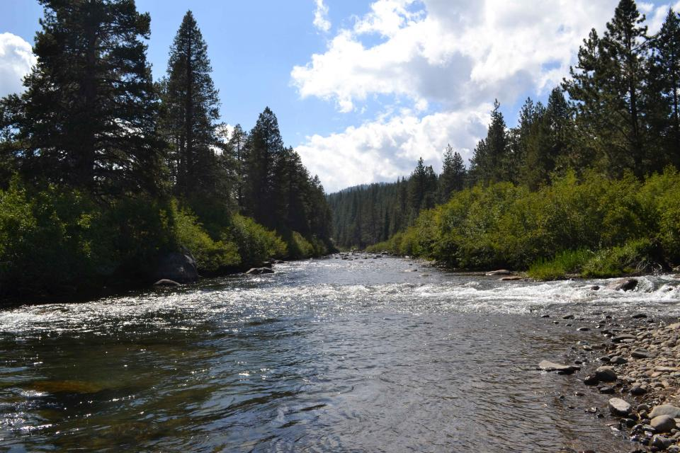 Sierra Nevada headwaters stream